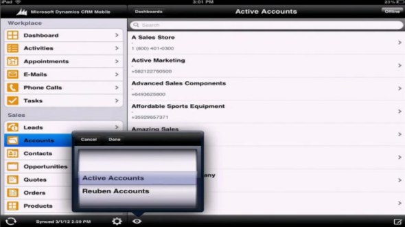 Microsoft Dynamics CRM Mobile iPad views