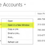 Power User Tips for CRM 2013 Navigation