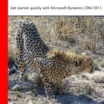 Our New Book: CRM 2013 QuickStart