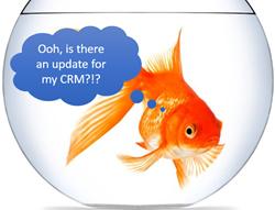 CRM_goldfish